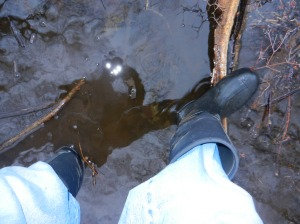 boots on the ground in the puddle